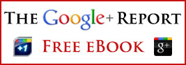 Online Success Google Plus Report